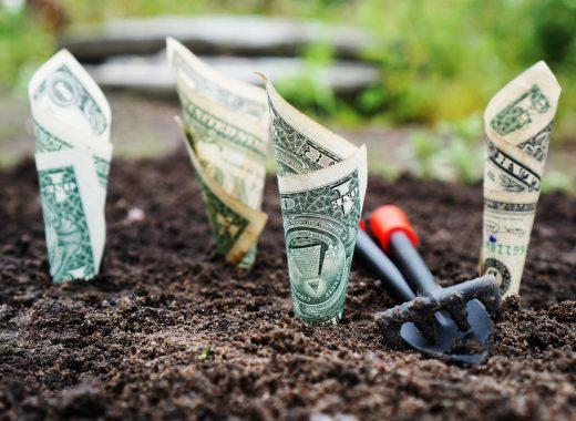 pożyczki krótkoterminowe